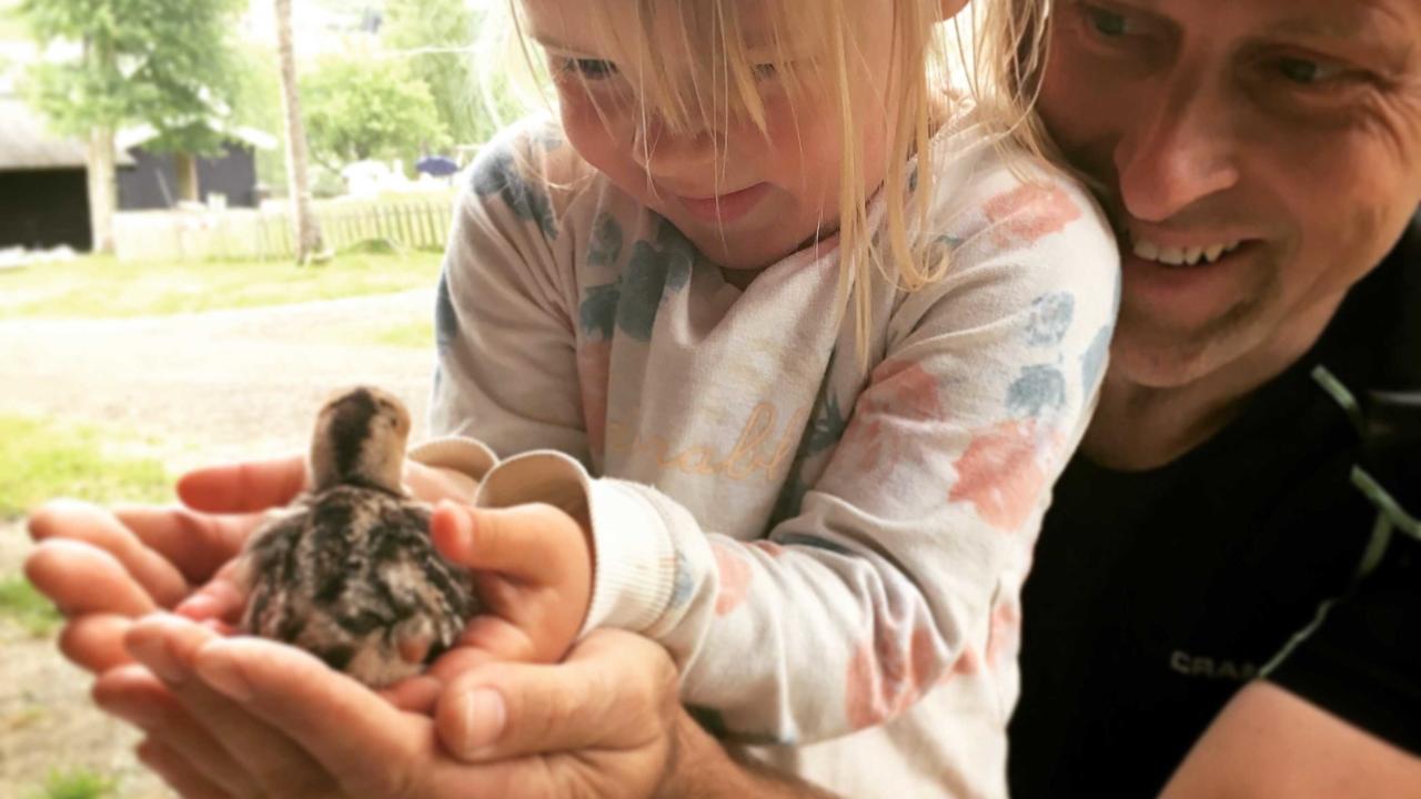 Barnas Gård på hafjell